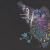 I sensi del viaggio – La via del Profumo