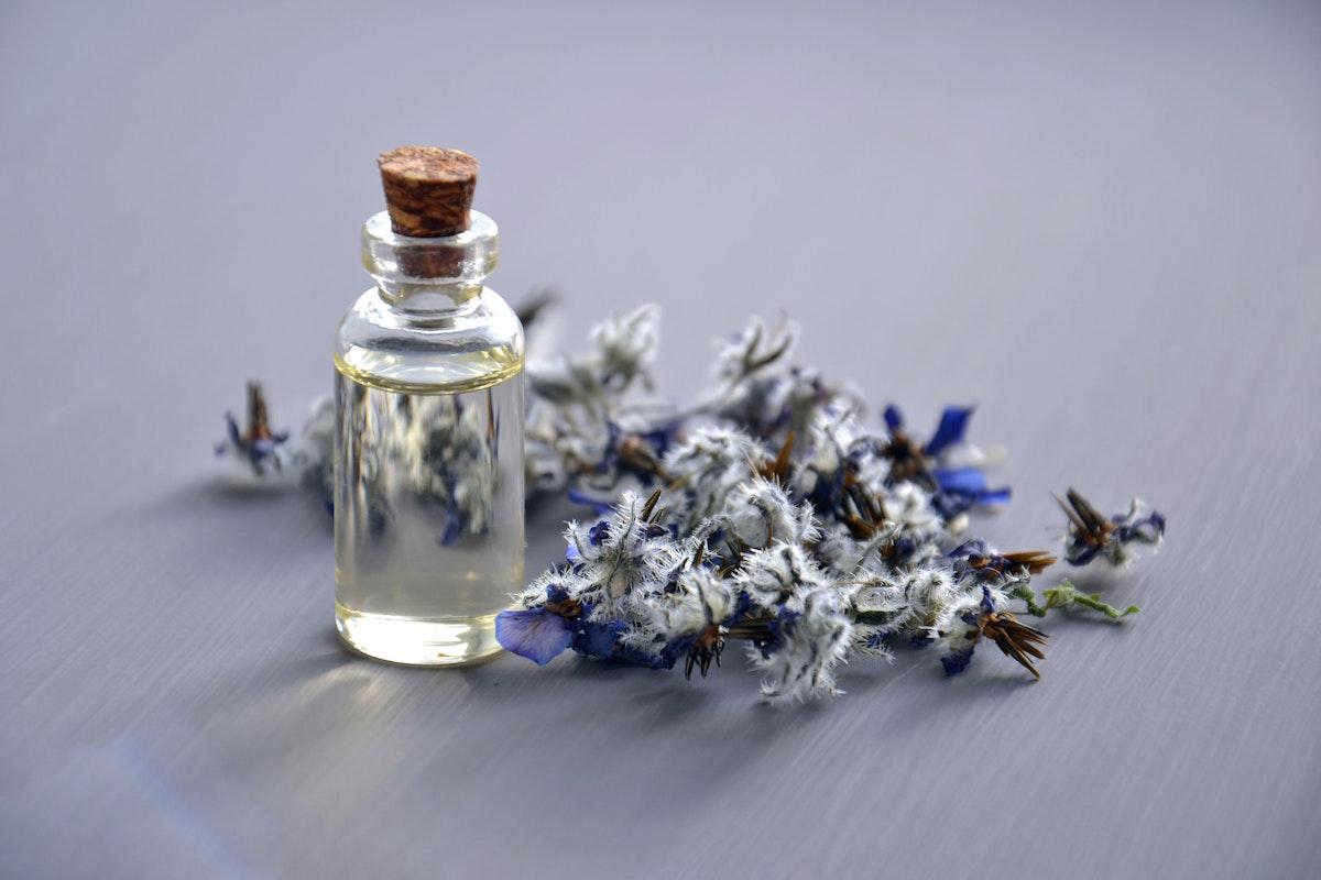 naso creatore di profumi essenze fragranze profumi lavanda