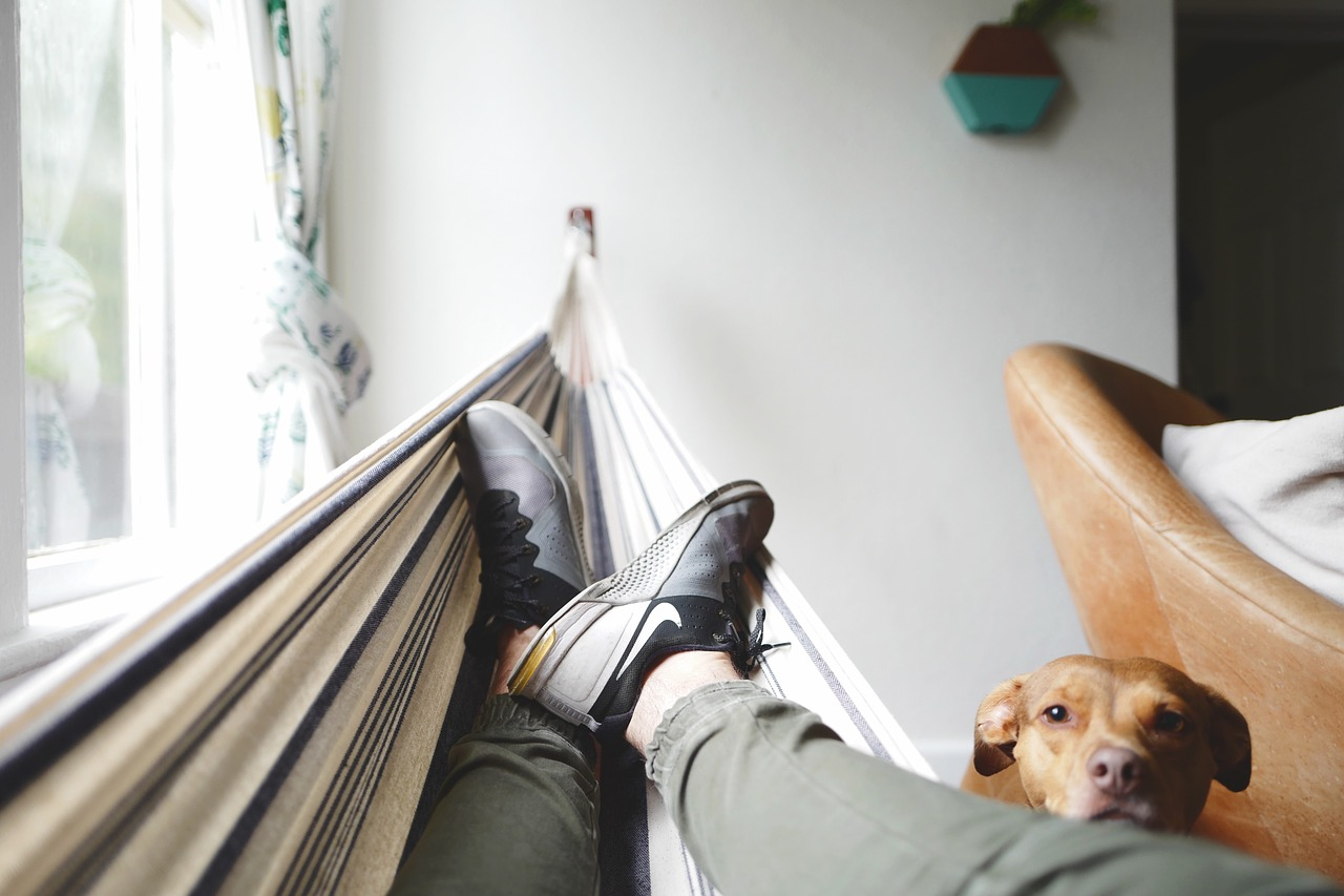 sonno profondo riposo culla cuccioli