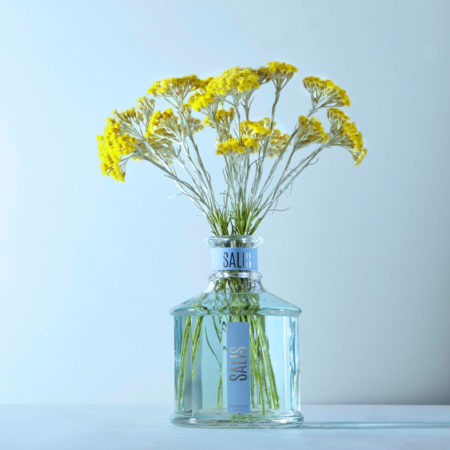Nuova fragranza Salis